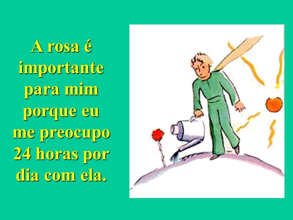A rosa é importante para mim porque eu me preocupo 24 horas por dia com ela.