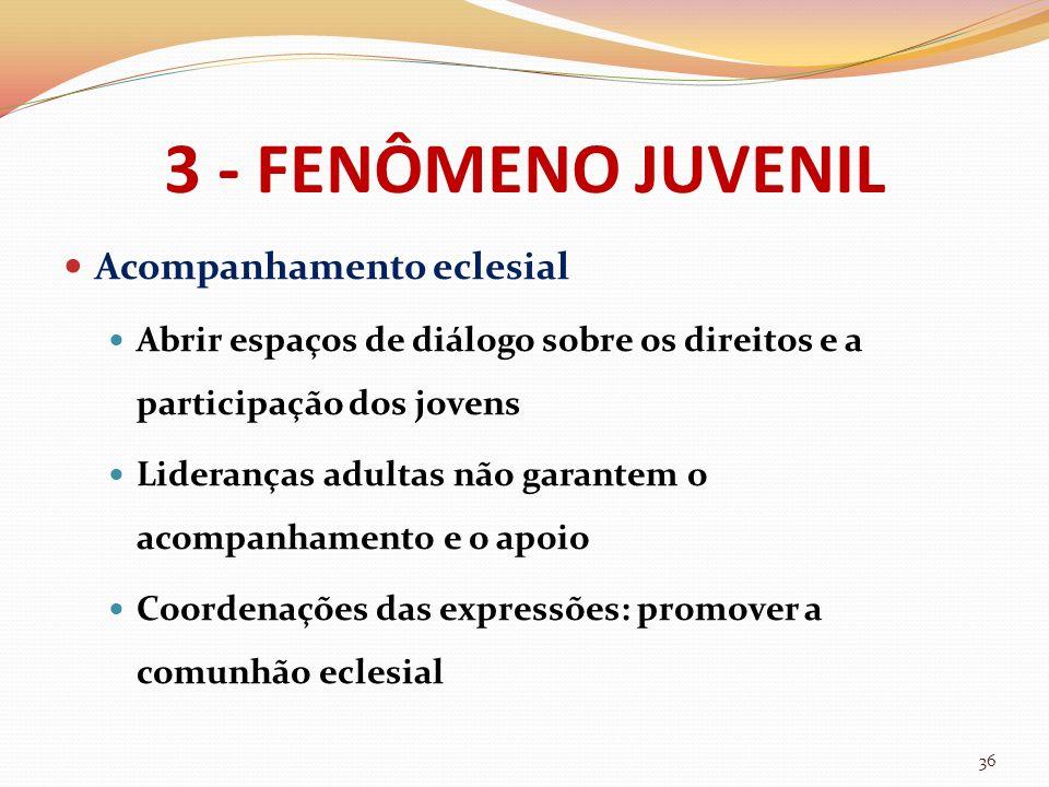 3 - FENÔMENO JUVENIL Acompanhamento eclesial