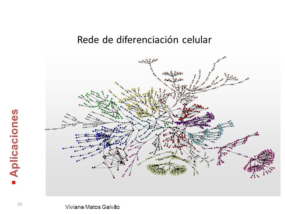 Rede de diferenciación celular