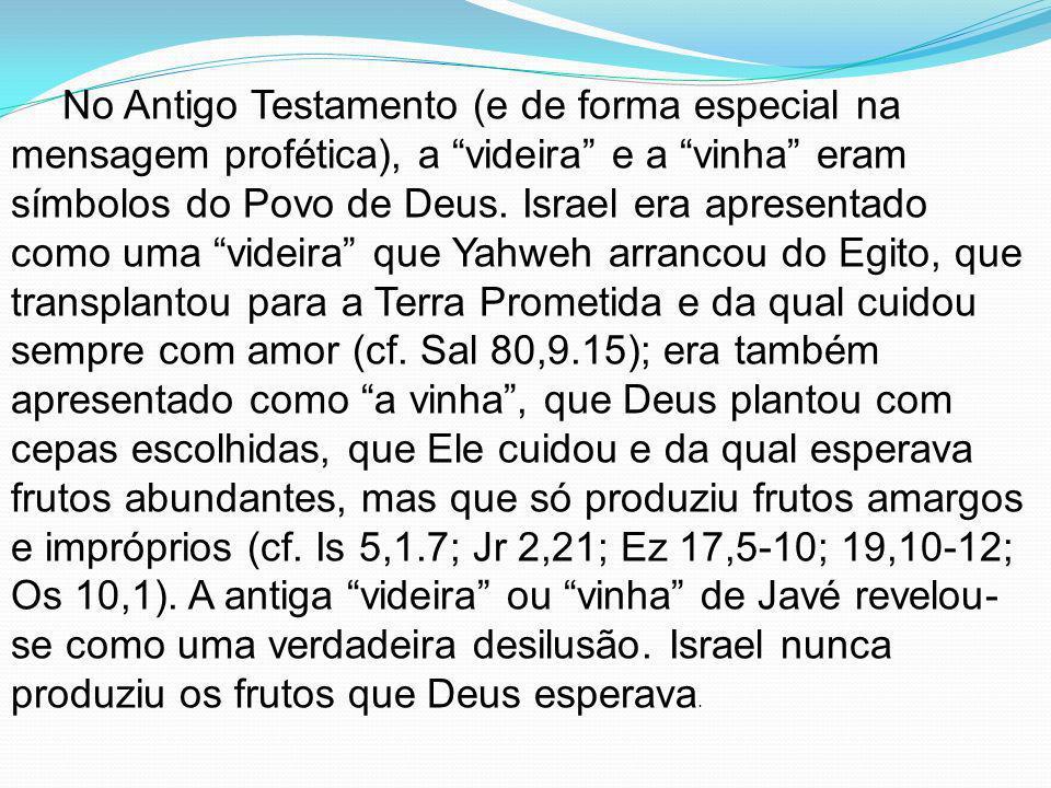 No Antigo Testamento (e de forma especial na mensagem profética), a videira e a vinha eram símbolos do Povo de Deus.