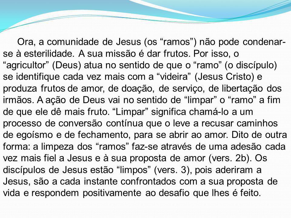 Ora, a comunidade de Jesus (os ramos ) não pode condenar-se à esterilidade.