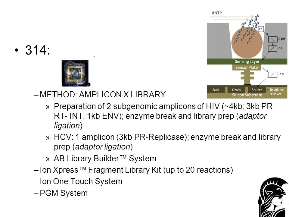 314: METHOD: AMPLICON X LIBRARY