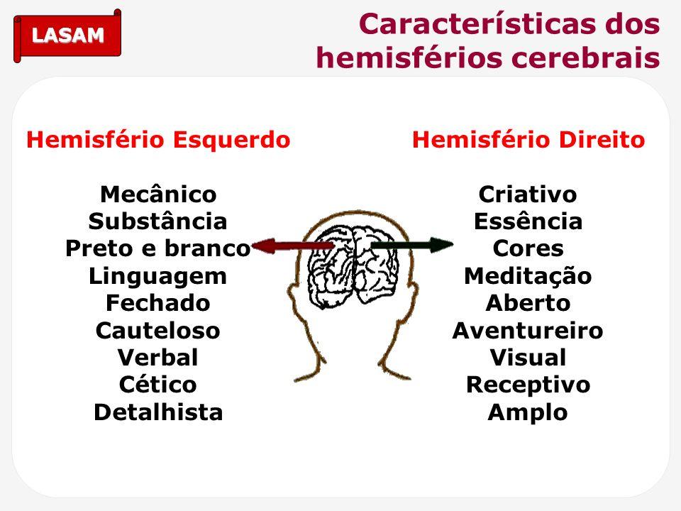 Características dos hemisférios cerebrais