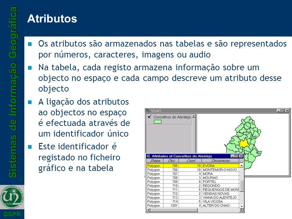 Atributos Os atributos são armazenados nas tabelas e são representados por números, caracteres, imagens ou audio.