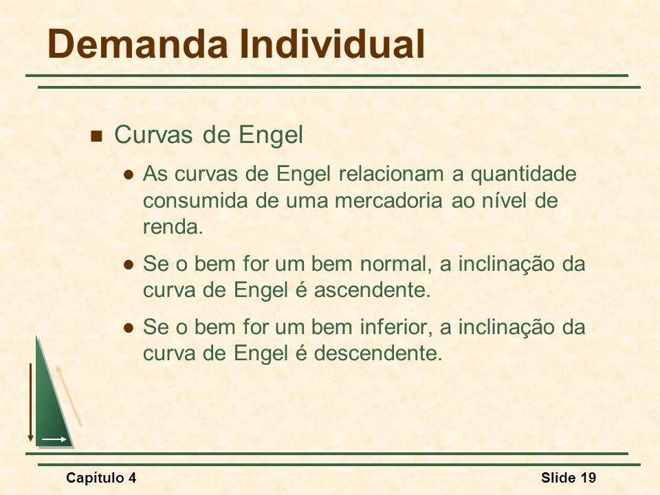 Demanda Individual Curvas de Engel