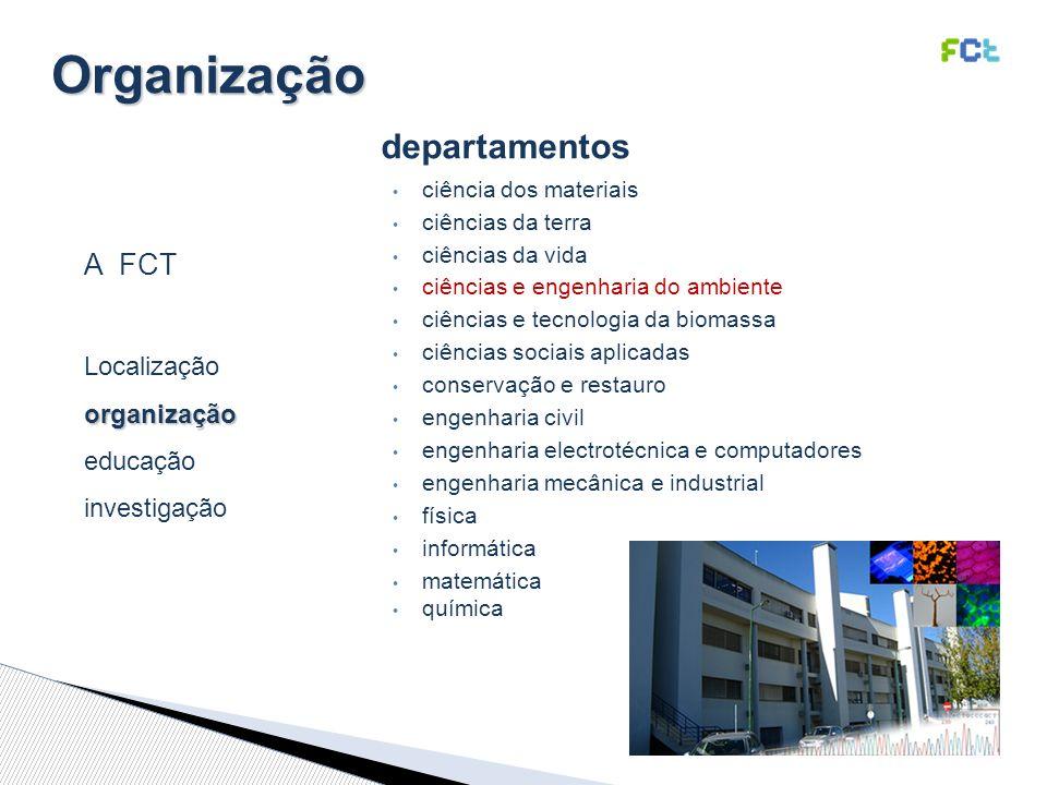 Organização departamentos