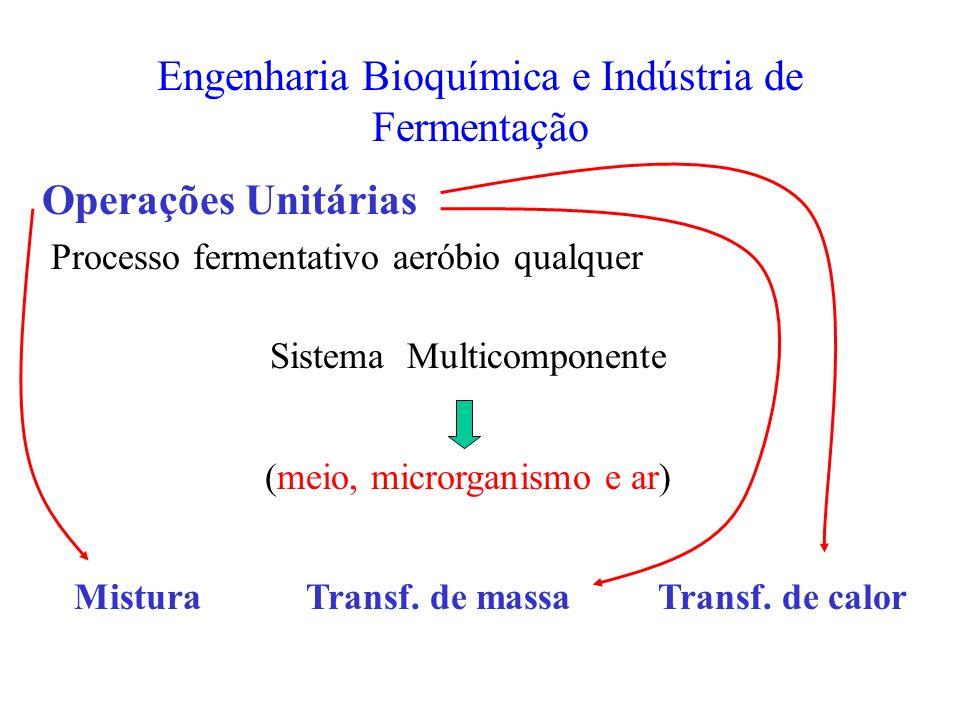 Engenharia Bioquímica e Indústria de Fermentação