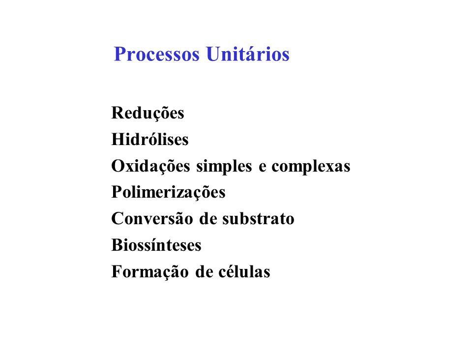 Processos Unitários Reduções Hidrólises Oxidações simples e complexas