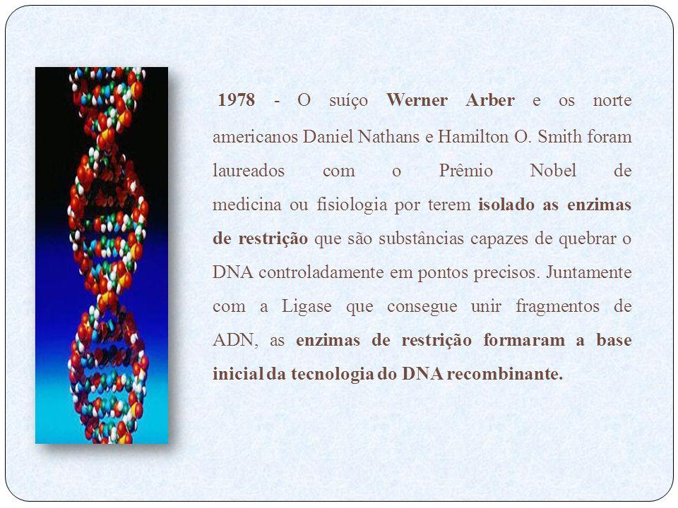 1978 - O suíço Werner Arber e os norte americanos Daniel Nathans e Hamilton O.