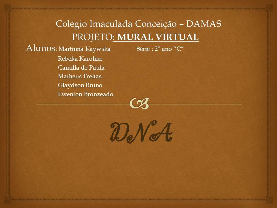 Colégio Imaculada Conceição – DAMAS