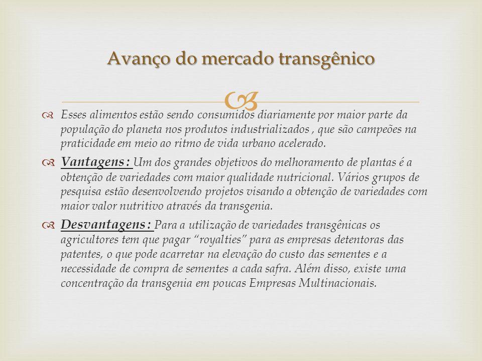 Avanço do mercado transgênico