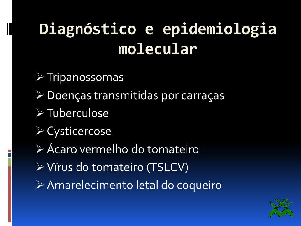 Diagnóstico e epidemiologia molecular