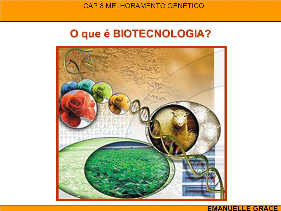 CAP 8 MELHORAMENTO GENÉTICO