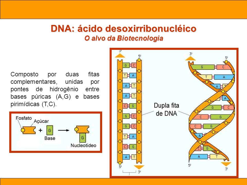 DNA: ácido desoxirribonucléico O alvo da Biotecnologia