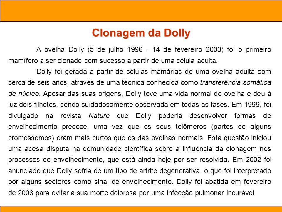 Clonagem da Dolly Ciências . Aula 03 Biotecnologia