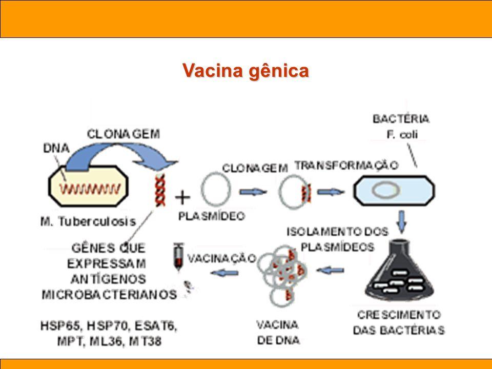 Ciências . Aula 03 Biotecnologia Vacina gênica