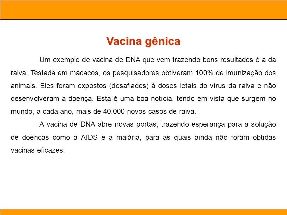 Vacina gênica Ciências . Aula 03 Biotecnologia