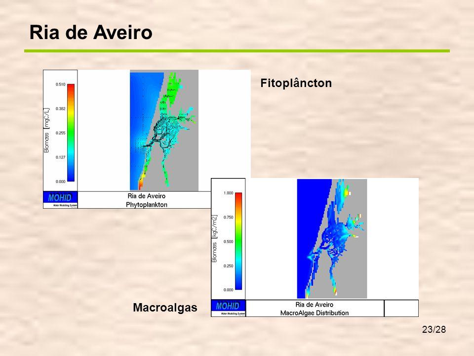 Ria de Aveiro – Efeitos na qualidade da água