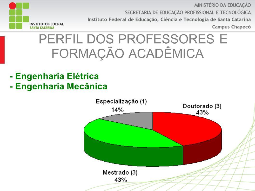 PERFIL DOS PROFESSORES E FORMAÇÃO ACADÊMICA