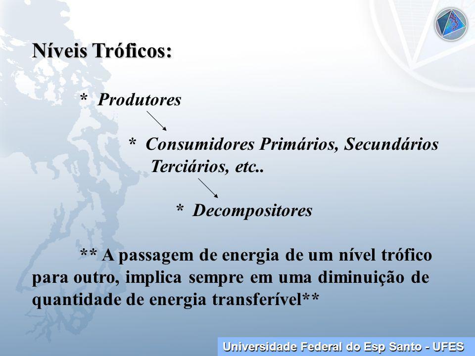 Níveis Tróficos: * Produtores * Consumidores Primários, Secundários