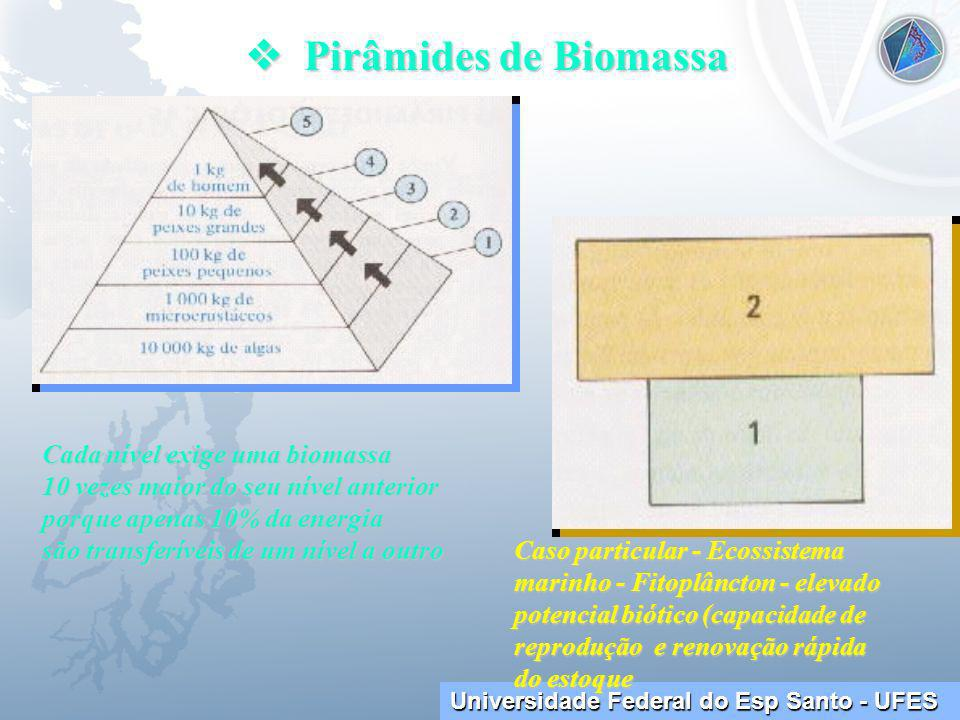  Pirâmides de Biomassa