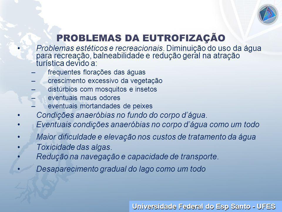 PROBLEMAS DA EUTROFIZAÇÃO