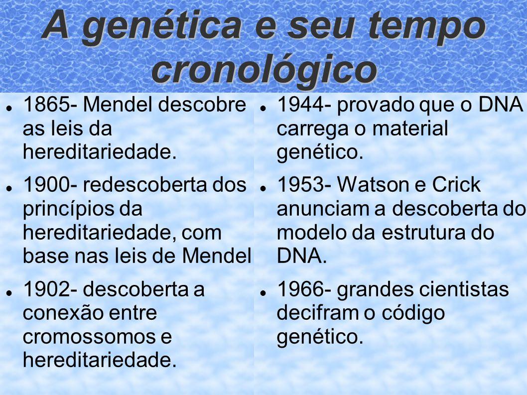 A genética e seu tempo cronológico