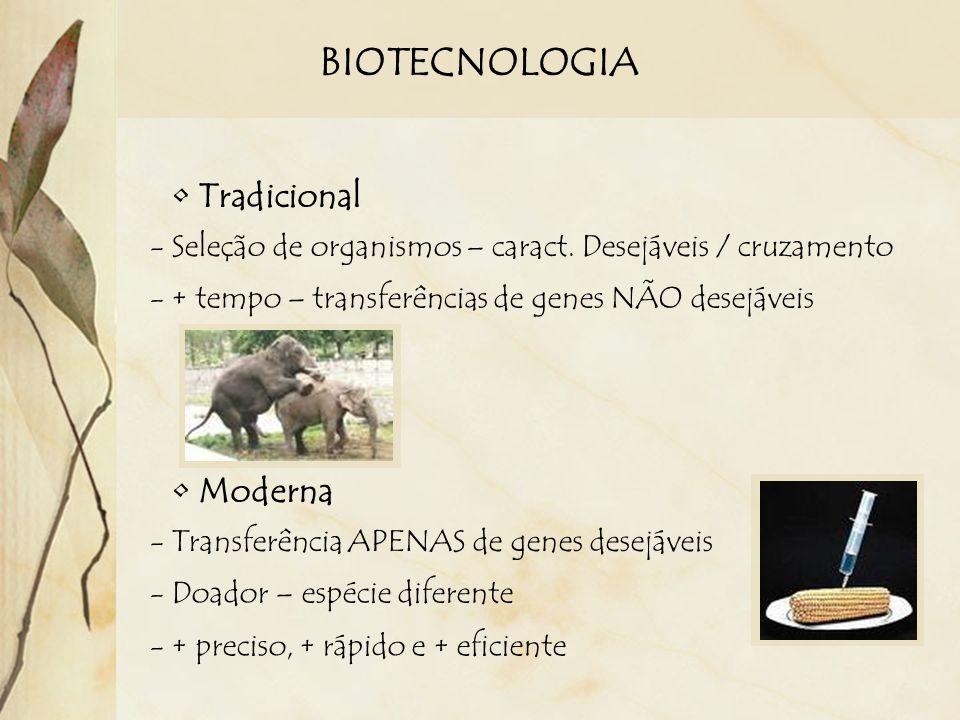 BIOTECNOLOGIA Tradicional Moderna