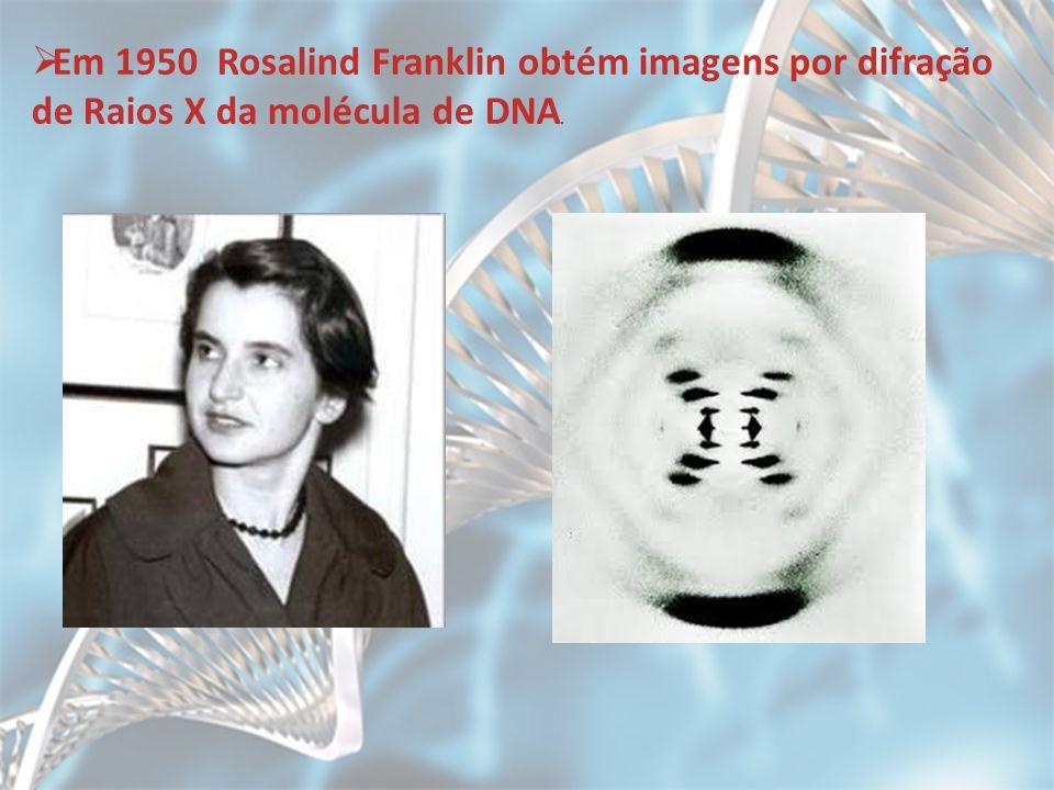 Em 1950 Rosalind Franklin obtém imagens por difração