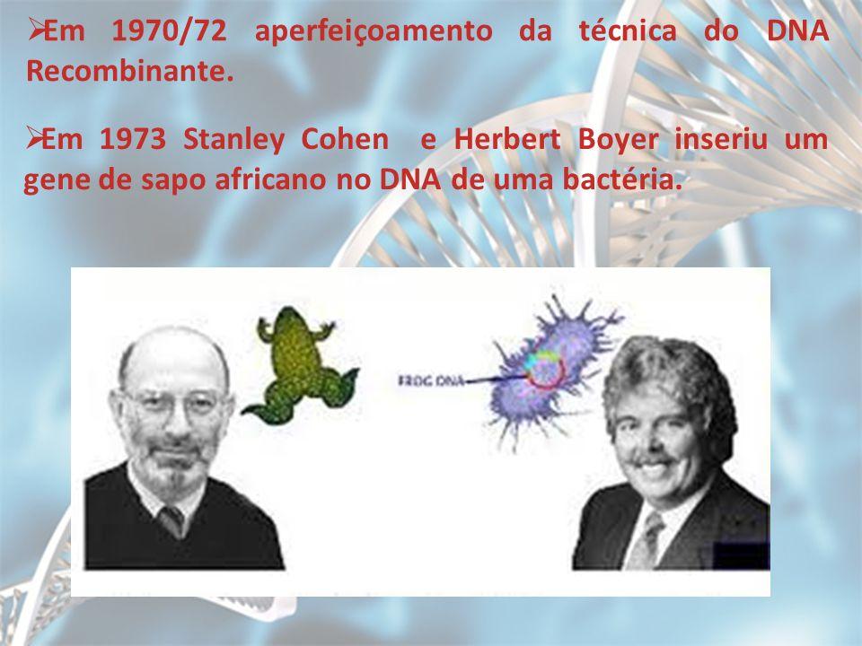 Em 1970/72 aperfeiçoamento da técnica do DNA Recombinante.