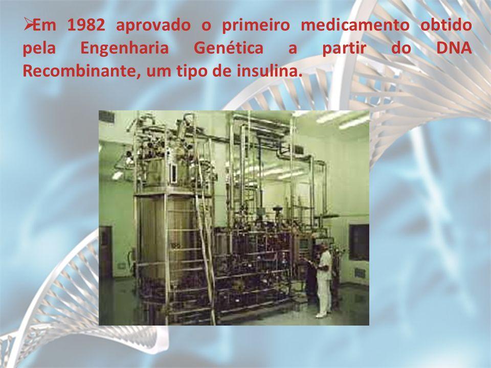 Em 1982 aprovado o primeiro medicamento obtido pela Engenharia Genética a partir do DNA Recombinante, um tipo de insulina.