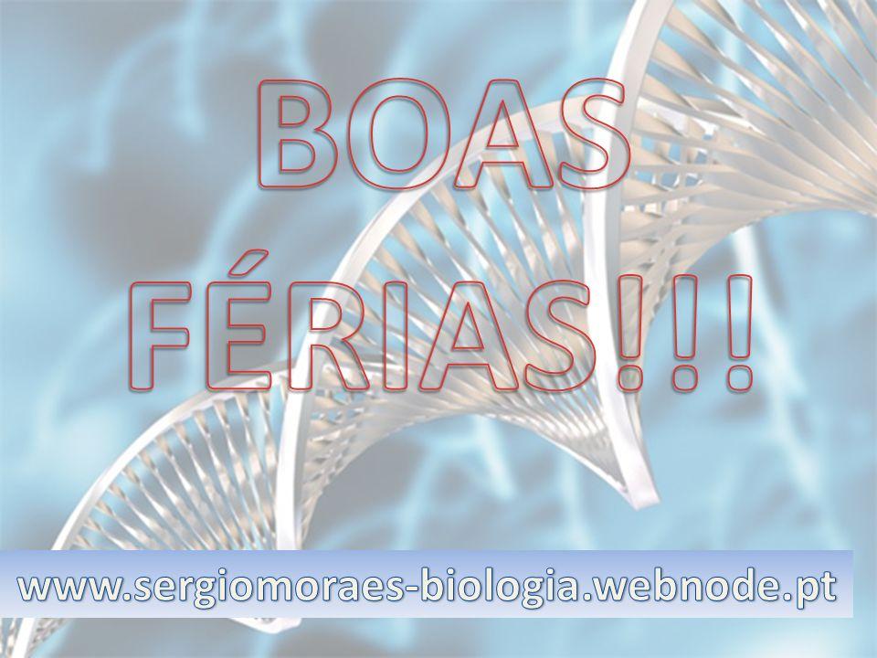 BOAS FÉRIAS!!! www.sergiomoraes-biologia.webnode.pt