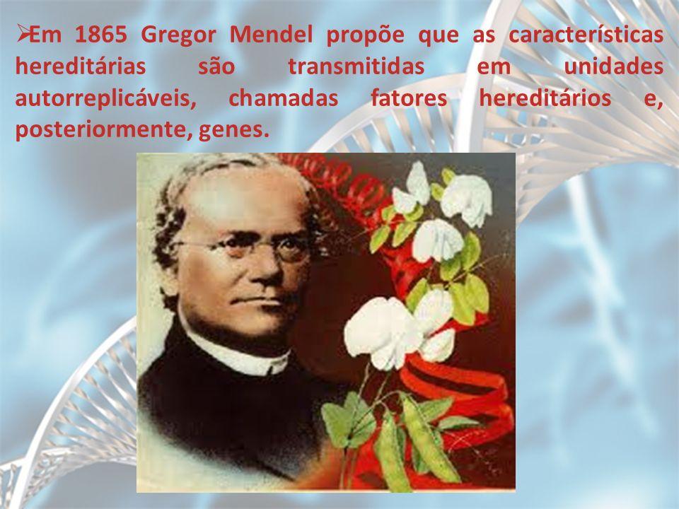 Em 1865 Gregor Mendel propõe que as características hereditárias são transmitidas em unidades autorreplicáveis, chamadas fatores hereditários e, posteriormente, genes.