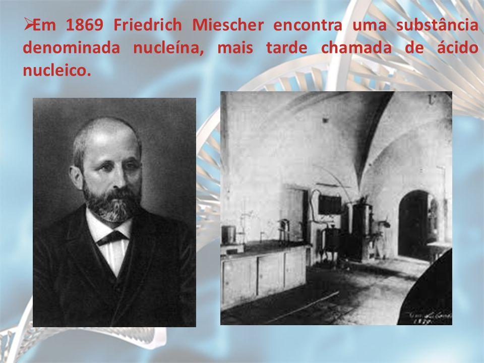Em 1869 Friedrich Miescher encontra uma substância denominada nucleína, mais tarde chamada de ácido nucleico.