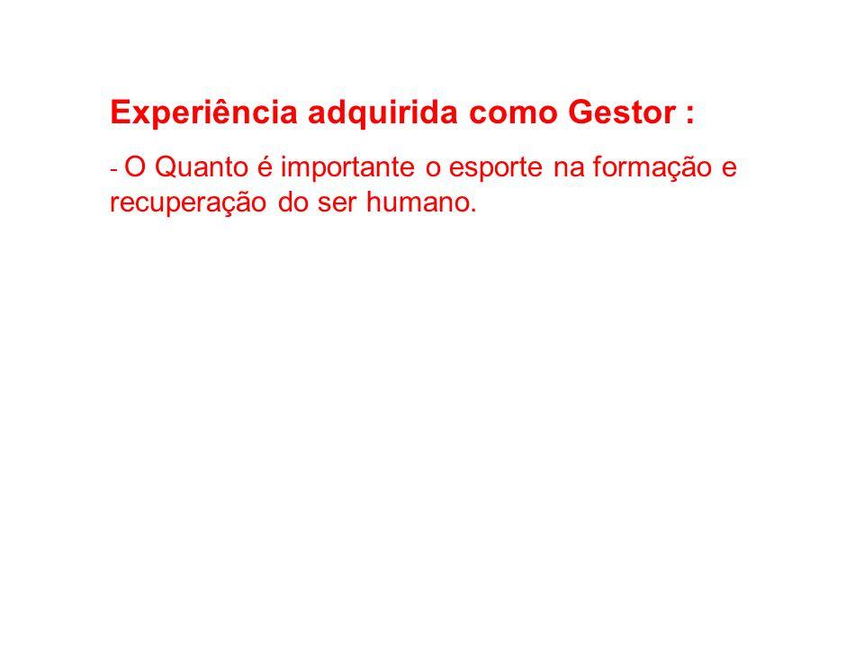 Experiência adquirida como Gestor :