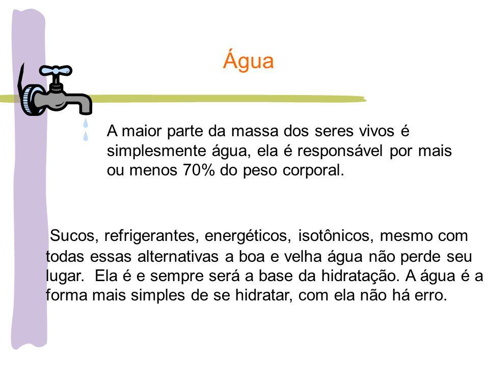 Água A maior parte da massa dos seres vivos é simplesmente água, ela é responsável por mais ou menos 70% do peso corporal.
