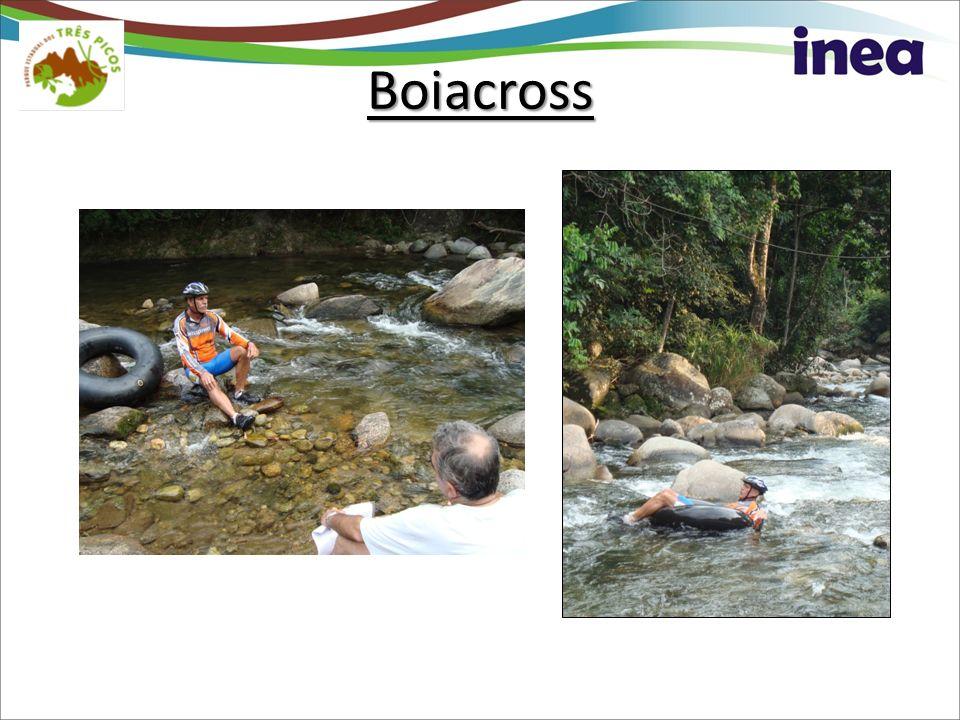 Boiacross
