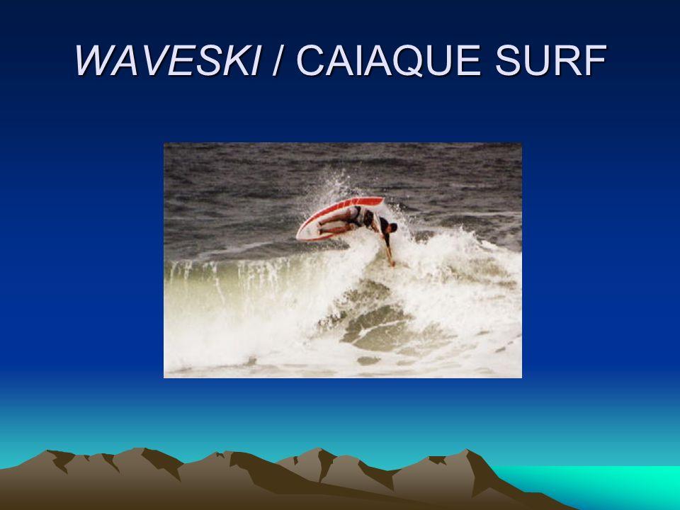 WAVESKI / CAIAQUE SURF