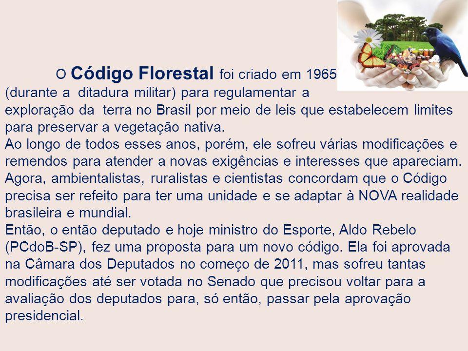 O Código Florestal foi criado em 1965