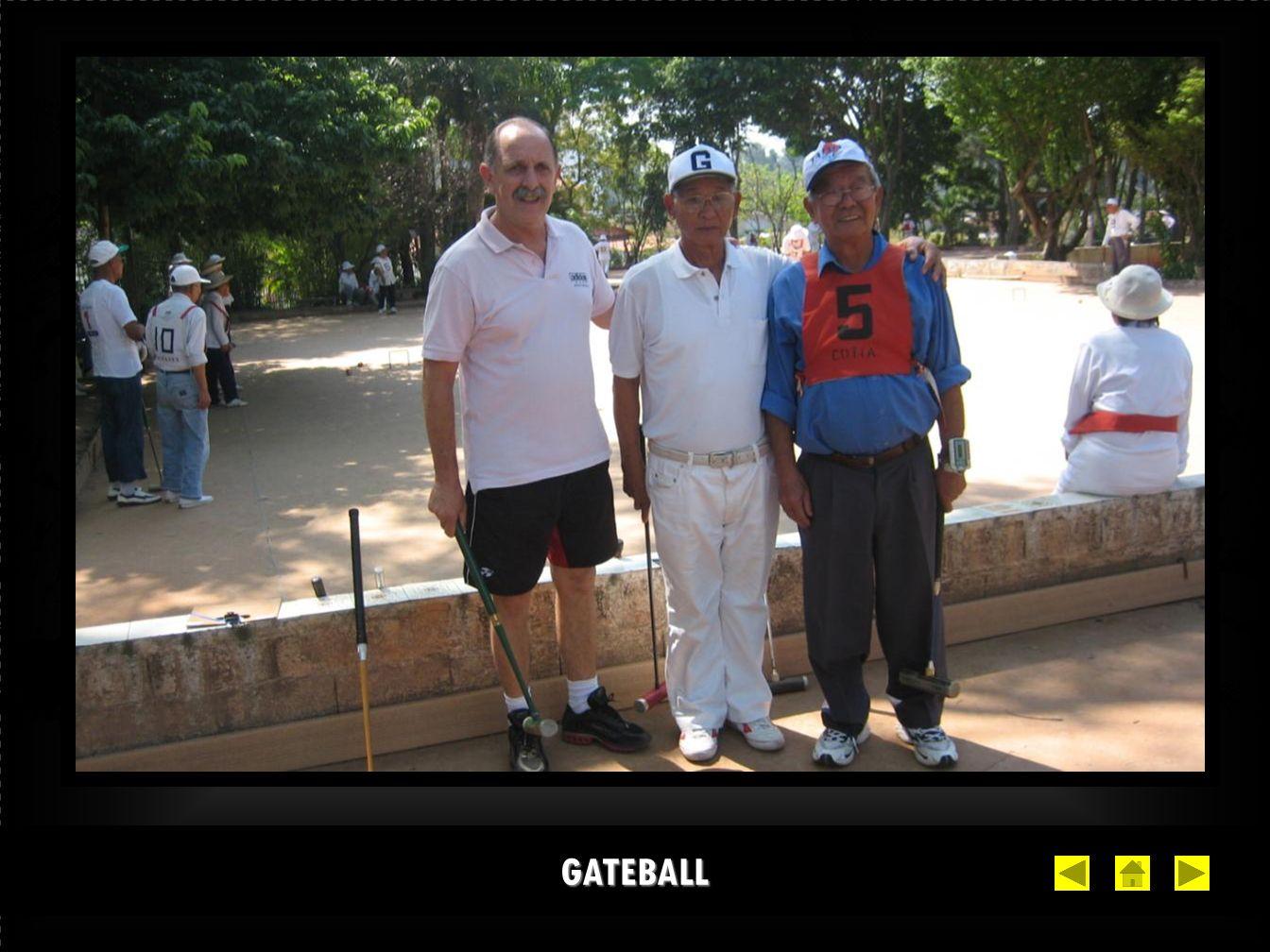 GATEBALL