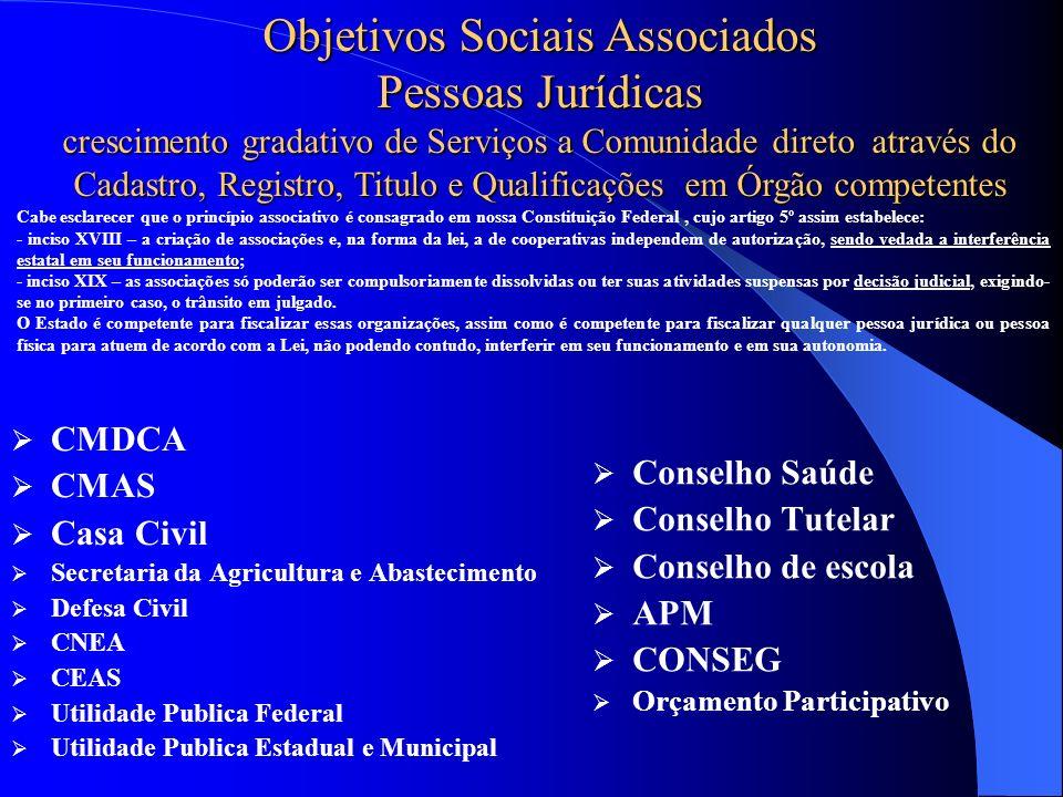 Objetivos Sociais Associados