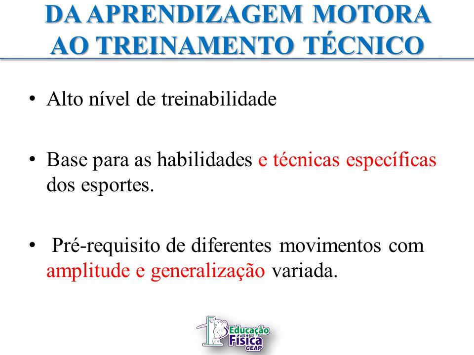 DA APRENDIZAGEM MOTORA AO TREINAMENTO TÉCNICO