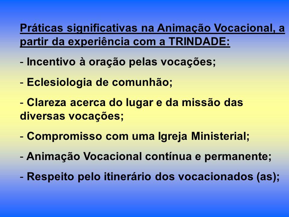 Práticas significativas na Animação Vocacional, a partir da experiência com a TRINDADE: