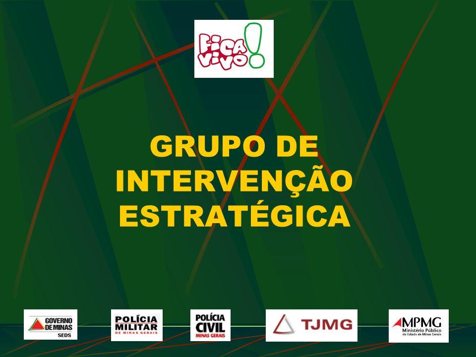 GRUPO DE INTERVENÇÃO ESTRATÉGICA