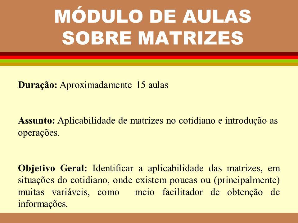MÓDULO DE AULAS SOBRE MATRIZES