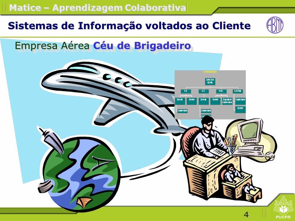 Sistemas de Informação voltados ao Cliente