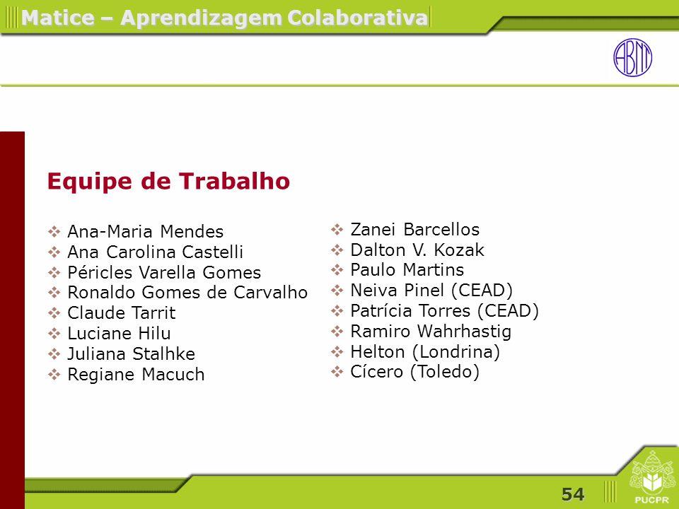 Equipe de Trabalho Ana-Maria Mendes Ana Carolina Castelli