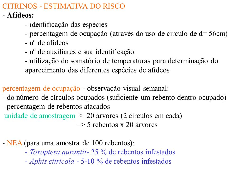 CITRINOS - ESTIMATIVA DO RISCO