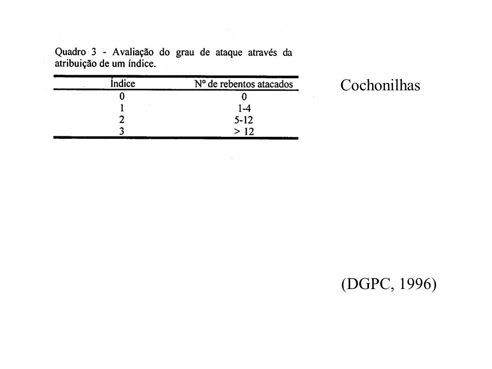 Cochonilhas (DGPC, 1996)