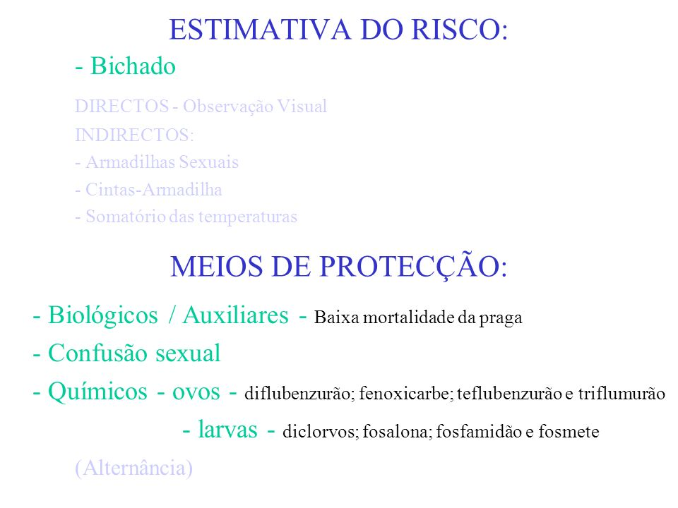 ESTIMATIVA DO RISCO: MEIOS DE PROTECÇÃO: - Bichado